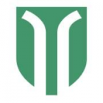 Insel gruppe square logo